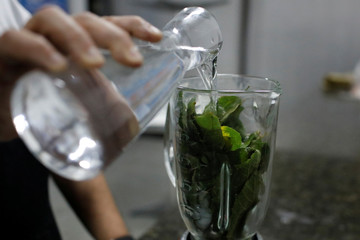 An HIV-positive man adds water to a blender with leaves of the tropical tree guasimo in Caracas