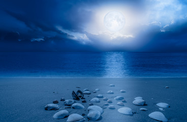 """Night sky with moon in the clouds with shell """"Elements of this image furnished by NASA"""