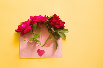 Red rose flower in a pink envelope on a yellow background, top view. Flower in an envelope