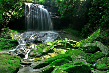 Rain Forest Waterfall and Large Mossy Boulders