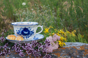 Beautiful cup with herbal tea standing on a stone against a background of green grass. The cup is decorated with cookies and flowers of thyme and St. John's wort