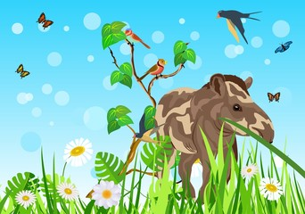 Tapir in the grass, colored sky with butterflies backhround
