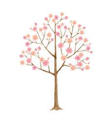 Watercolor vector illustration tree with pink flowers.