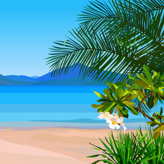 drawn beach background with turquoise water and tropical plants