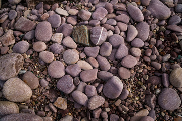 heart pebbles on the beach