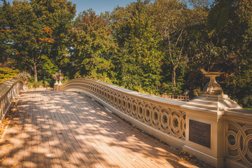 The Bow Bridge in Central Park, New York City, USA