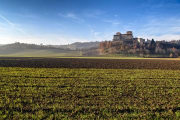 Paesaggio Agricolo e Castello
