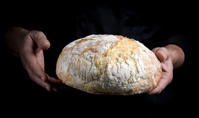male chef hands hold a whole loaf of baked round bread