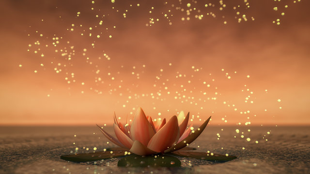 a lotus flower good for relaxation(3d rendering)