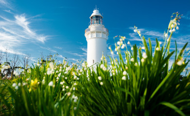 Beautiful Table Cape Lighthouse in Tasmania on a nice summers day.