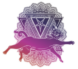 Black cat running or jumping silhouette portrait on top of ornate pentagram.