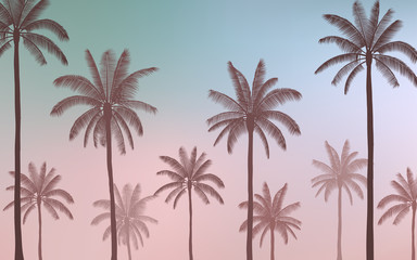 group of Silhouette palm tree on Vintage blue color sky background