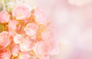 pink rose flower / soft color pink roses flower bouquet