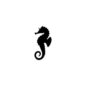 sea Horse vector icon. sea Horse sign on white background. sea Horse icon for web and app