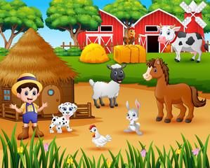 Farmer and farm animal in the farmyard
