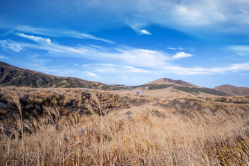 Aso mountain and dry brown grassland with miscanthusm in autumn, blue sky.