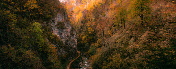 "Magic panoram with forest and autumn trees in GUAM gorge ""Guamka"", North Caucasus, Russia. Mountain road above. Yellow, red and green nature from high. Aerial drone shoot like a game location."