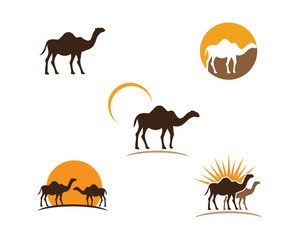 Camel Icon Vector illustration