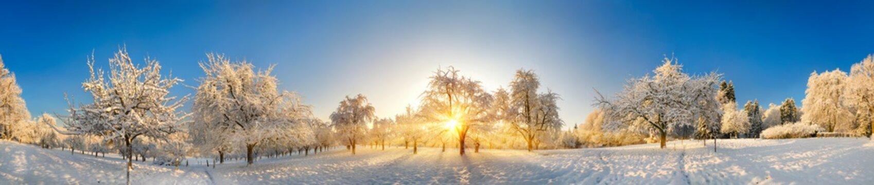 Panorama von zauberhafter Winterlandschaft