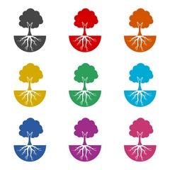 Tree and root logo, tree and root icon, color set