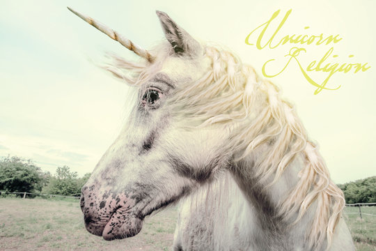 Unicorn Religion photo typo design