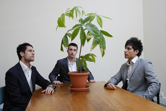 Stock photo of young businessmen contemplating green issues.