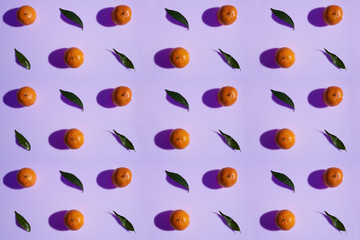 Tangerine pattern with leaves on a violet color background in high resolution
