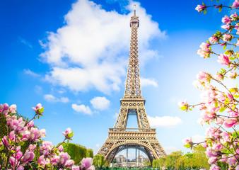Poster de jardin Paris eiffel tower, France