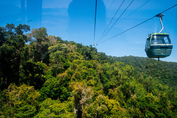Cable Car Line over Rainforest