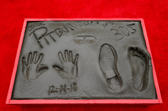 The handprints, footprints and signatures of American rapper Pitbull are pictured during a ceremony in the forecourt of the TCL Chinese theatre in Los Angeles