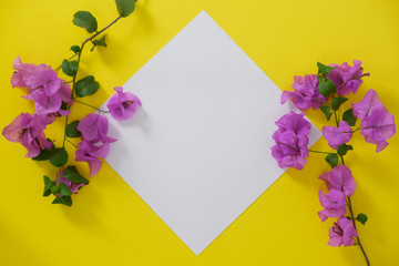 Mock-up white paper with space for text or picture on yellow background and flowers.
