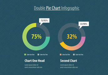 Double Pie Chart Infographic Layout