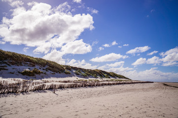 Dunes at the coast of Amrum in Germany.
