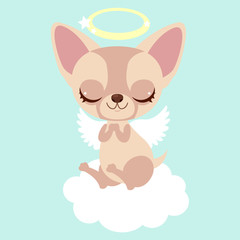 Cute chihuahua angel on the cloud. Funny sticker for a gift. Character for birthday or valentine's day.
