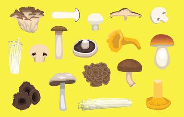 Various Mushroom Type Set Cartoon Vector Illustration