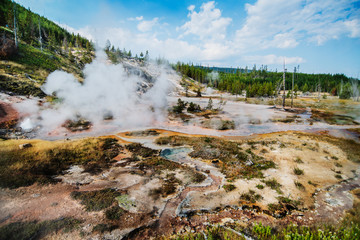 Artists Paint Pot Trail in Yellowstone National Park