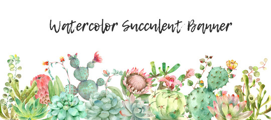Succulents banner watercolor