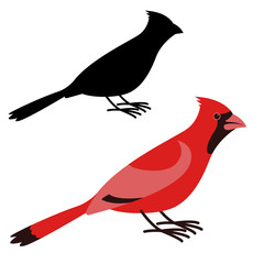 cardinal bird, vector illustration ,flat style ,profile