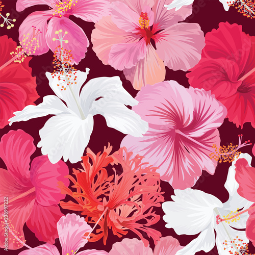 Seamless Pattern Of Colorful Hibiscus Flowers Background Vector Set