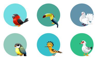 vector set of labels birds, exotic, parrots, paradise,