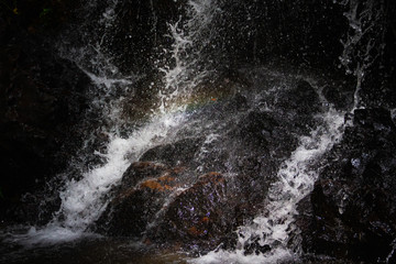Water falling on stone in the forest black background