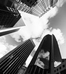 Wall Mural - Tall skyscrapers in downtwon San Francisco in black and white effect