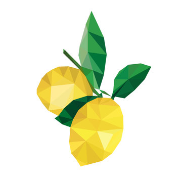 Colorful polygonal style design of two lemon fruits