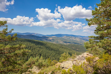 beautiful landscape with blue sky, clouds and green pine tree forest in Canencia mountain (Madrid, Spain, Europe)