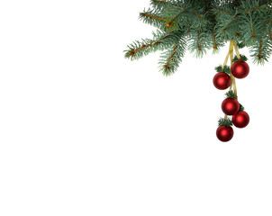 Branch of christmas tree with bright red christmas balls on white background isolated