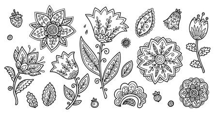 Set of vintage line art doodle style flowers, vector coloring book floral elements set