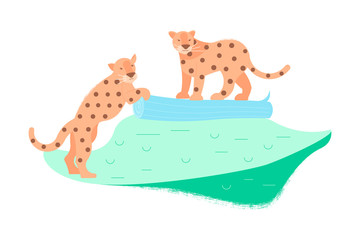Two cute leopards
