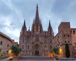Foto op Canvas Barcelona Barcelona. The Cathedral at dawn.