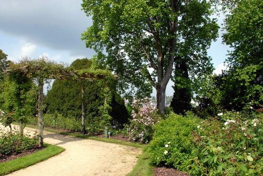 Ville de Laval, jardins de la Perrine, chemin arboré, département de la Mayenne, France