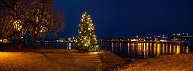 Weihnachtsbaum Mainz-Kastel